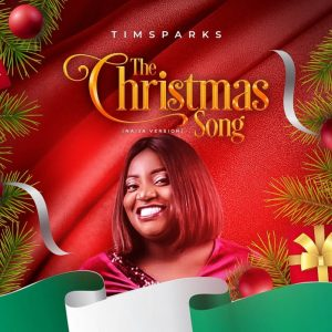 The Christmas Song – Timsparks